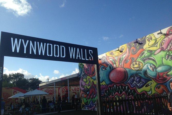 Recorrido en bicicleta por el arte y el graffiti de Wynwood