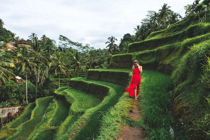 Private Bali Tour: Ubud and Tanah Lot Tour