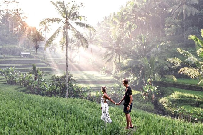 Private Ubud Kintamani Tour