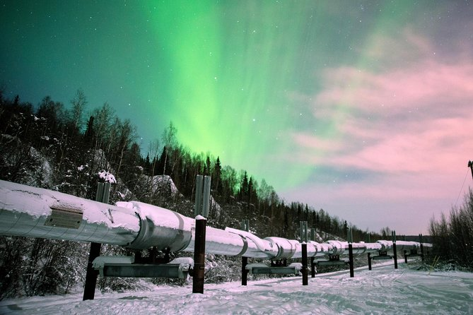Fairbanks Evening Aurora Viewing Tour