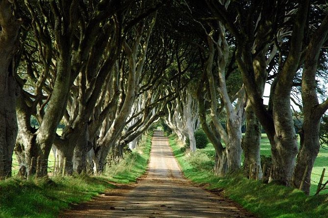 Game of Thrones and Giant's Causeway Day Tour from Belfast