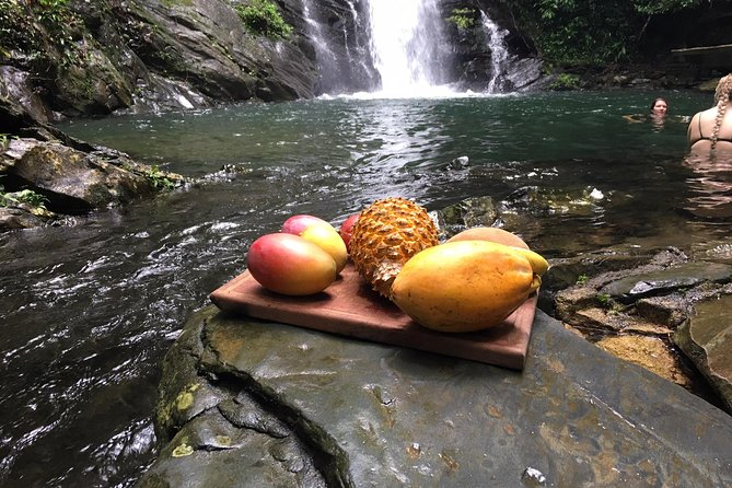 Waterfall Swim Excursion 45 minutes from Placencia