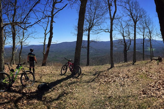 Mountain Biking Adventure on Narrowback Mountain