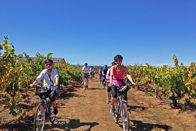 Healdsburg Half-Day Cycling Wine Tour from Windsor