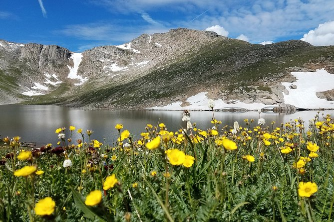 Full-Day Summer Sightseeing Tour to Mount Evans from Denver