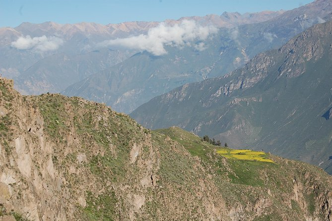 2-Day Colca Canyon by Bus from Arequipa Finishing in Puno