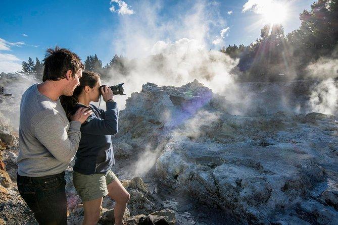 Rotorua's Hellsgate – Tauranga Shore Excursion