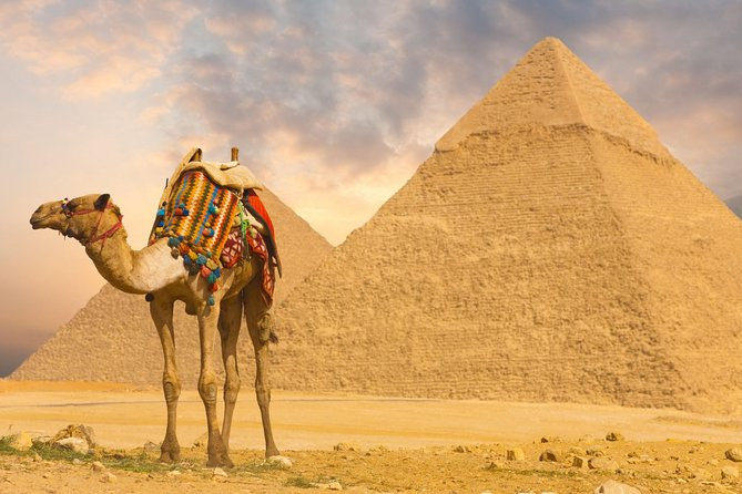 Day Tour to Cairo and Pyramids from Port Said
