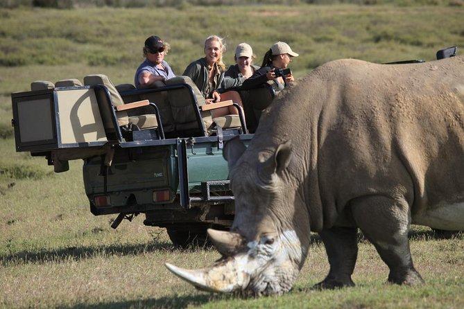 Private Garden Route Tour from Cape Town with Game Drive