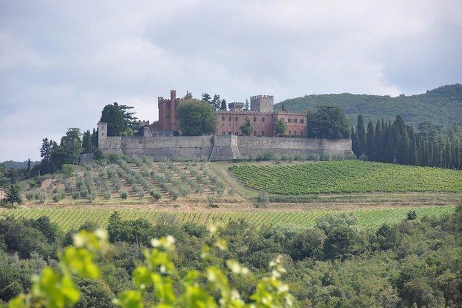 Chianti Classico Weintour - Freitags von SIENA