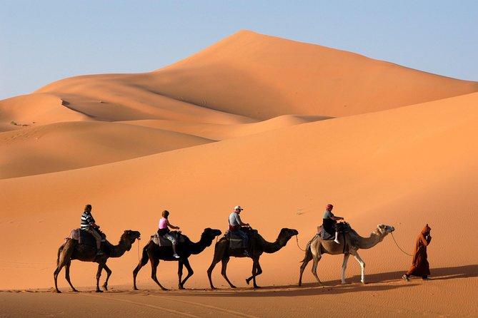 4 days Morocco shared desert tour from Marrakech