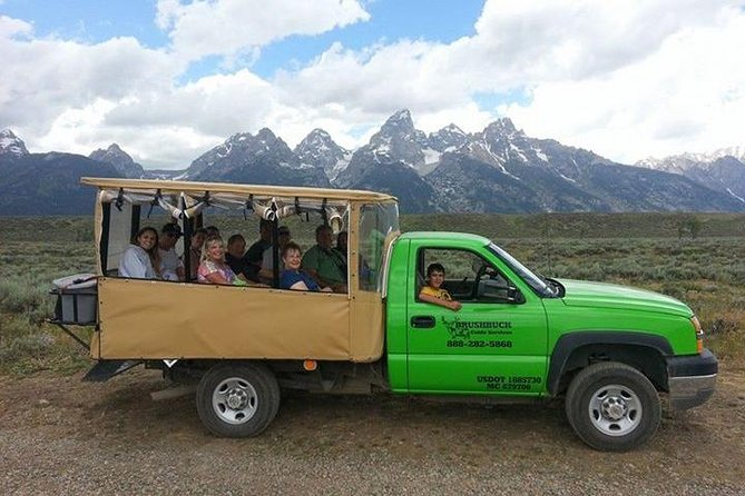 Grand Teton Wildlife Safari i Open Air Vehicle