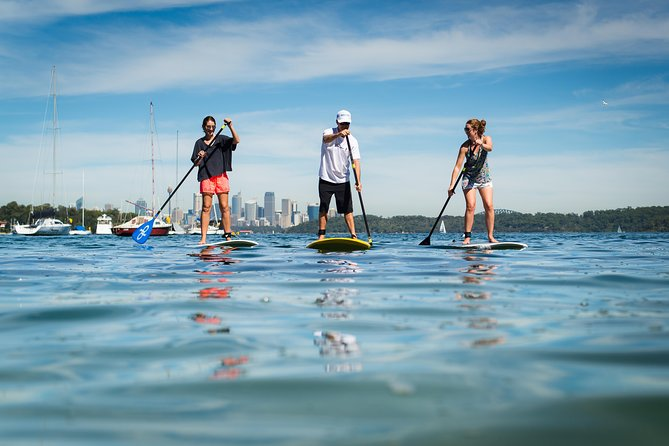Stand Up Paddle on Sydney Harbour from Watsons Bay
