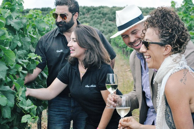 Half-Day Small-Group Wine Tour in Chania