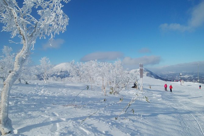 Shared Arrival Transfer : New Chitose Airport to Ski Resort in Hokkaido