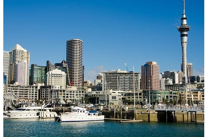 Private Chauffeur Driven Auckland City Tour