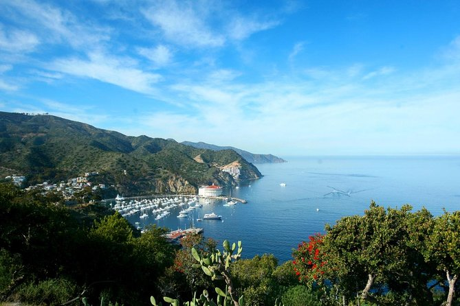 Catalina Island Day Trip from Anaheim with Optional Upgrades
