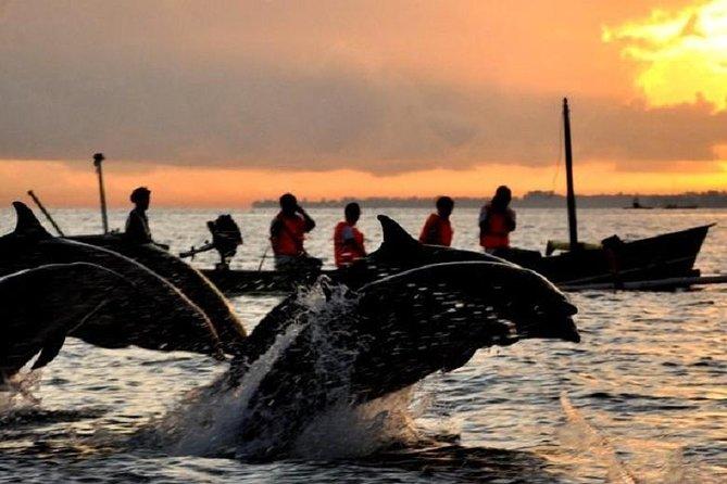 Excursion pour observer les dauphins à la cascade de Sekumpul au lever du soleil