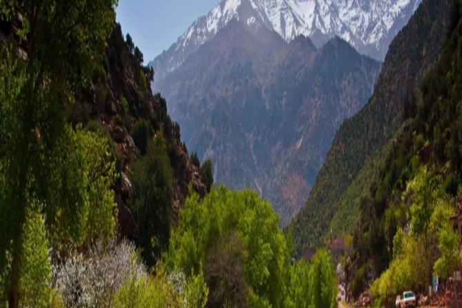 Day trip in high Atlas Mountains & experience the Berber life in three valleys