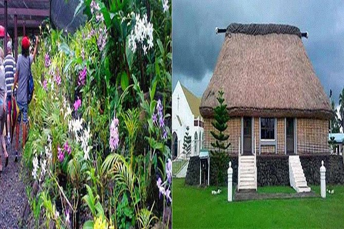 Historical and Cultural Tour of Nadi - Shore Excursions