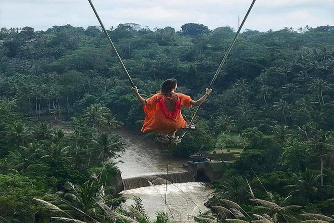 Experience Full Day to Bali Swing Temple and Monkey Forest