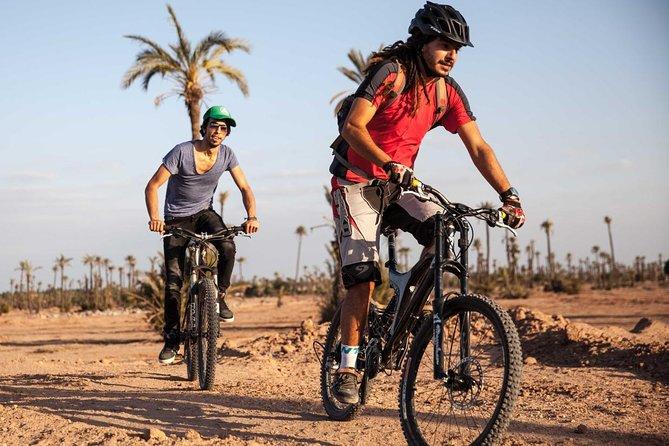 Full-Day Biking in the Palmgrove, Desert, villages & tracks in Douz