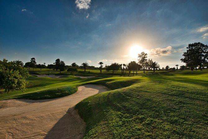 Forest, golf course 18 hole par 72