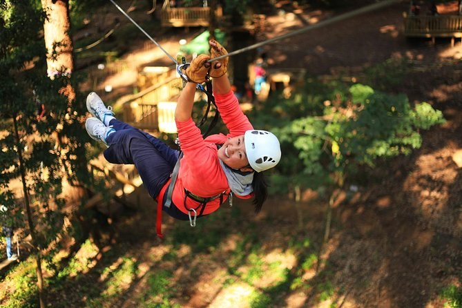 Tree Ropes & Zipline Experience | Dwellingup