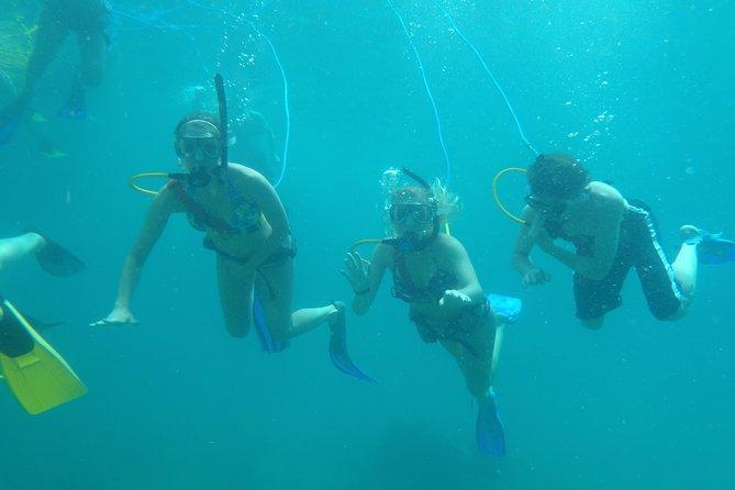 St Lucia Snuba Adventure at Pigeon Island