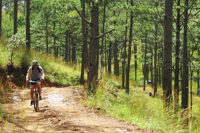 Dalat Hiking And Biking Combined Group Tour