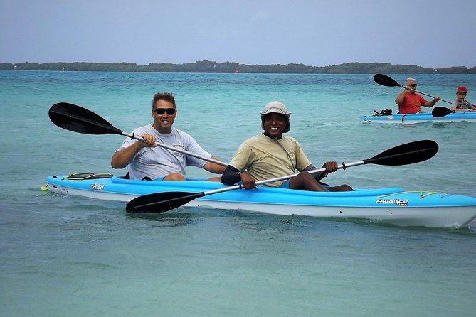 Mangrove Kayak et plongée en apnée