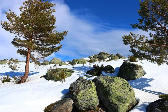 Serra da Estrela day tour From Porto