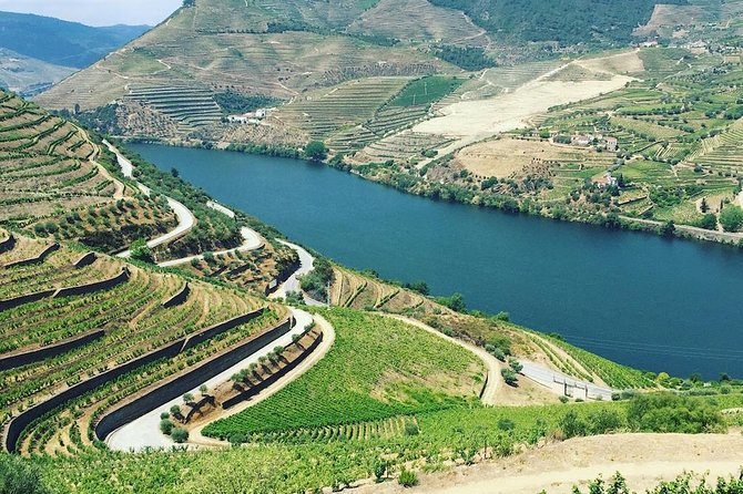Private Douro Valley Food and Wine Tour From Porto