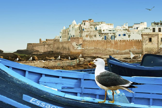 Full-Day Excursion to Essaouira from Marrakech