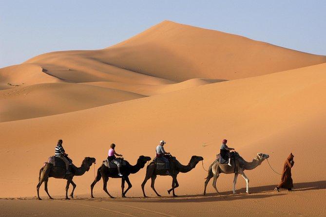 Sahara Desert 3-Day Tour from Marrakech: Ouarzazate, Mhamid Desert and Erfoud