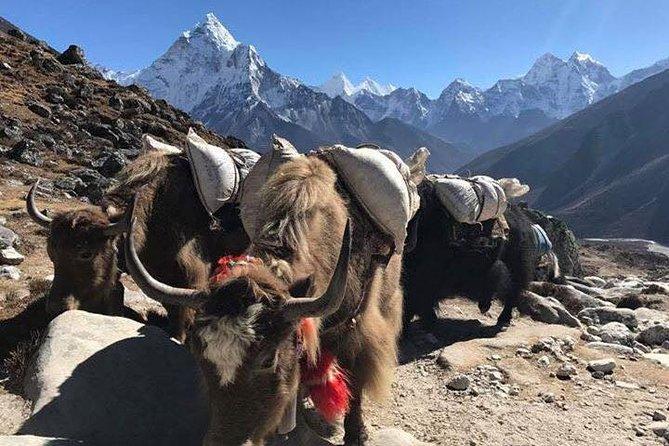 Everest Base Camp Trek in Nepal/ Mount Everest Base Camp Hike - 13 Days