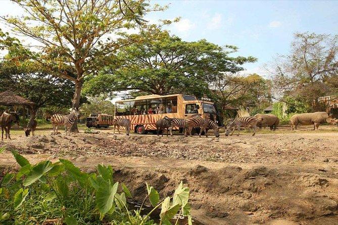 Full Day Tour to Bali Safari Marine Park and Ubud Sighseeing