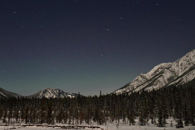 Snowshoe by star light
