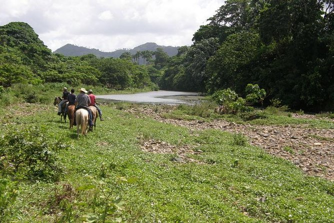 Private Tour: Punta Cana River Horseback Riding and Zipline