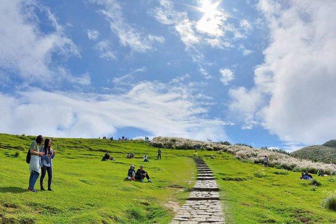 Yangmingshan Hiking Tour