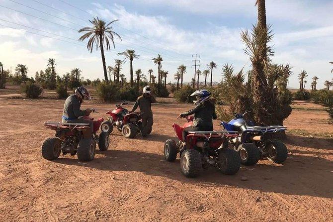Halvdagstur Quad i Palm Golve, Desert, Marrakech