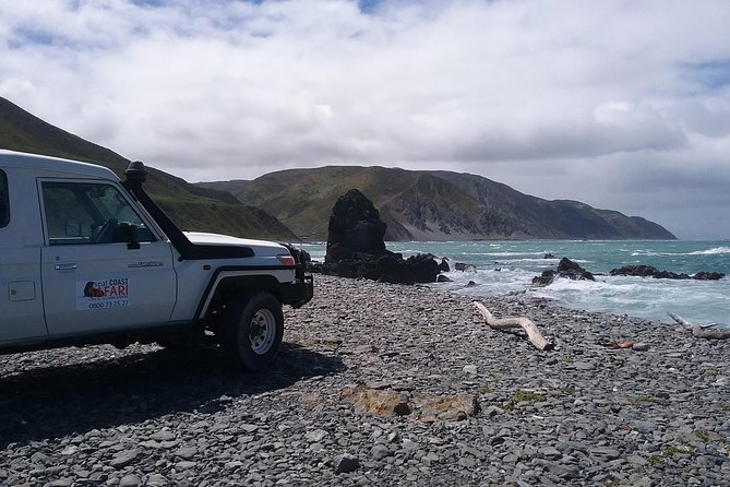 Seal Coast Safari Tour by 4WD