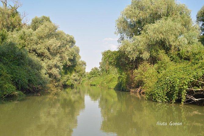 Danube Delta wild chanel