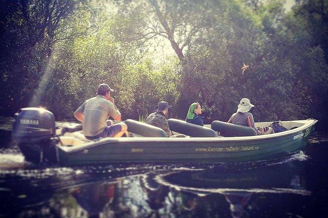 Danube Delta PRIVATE boat trip to Letea Forest (guided tour)