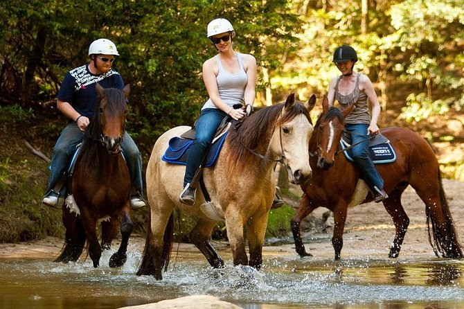 Horse Riding From Bodrum