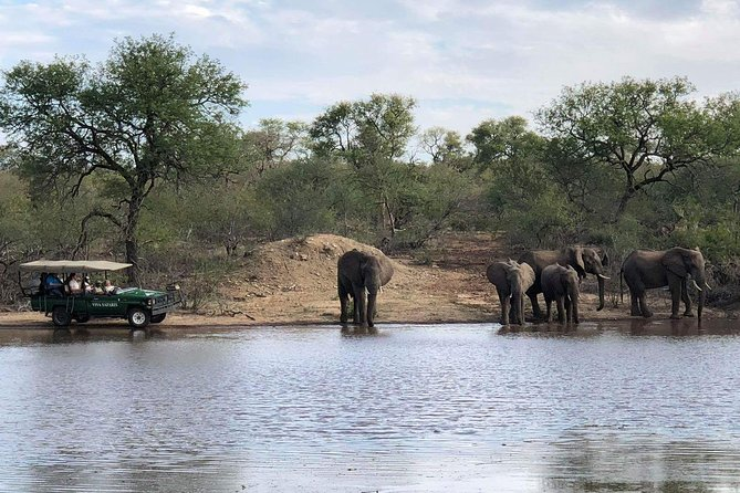4 Day Budget Kruger National Park Safari