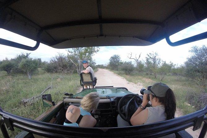 6 Day Classic Kruger National Park Safari