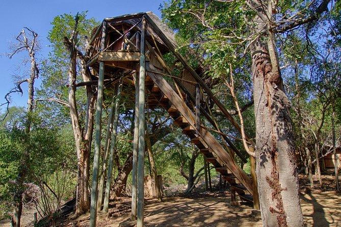 3 Day Treehouse Kruger National Park Safari