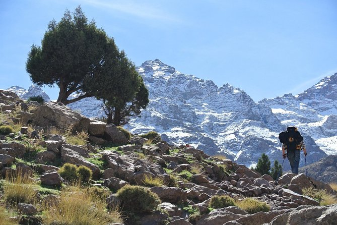 Day Trek to Imlil Valley & Aguersioual