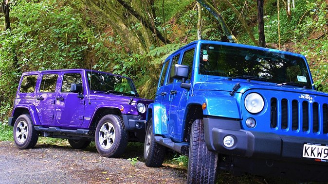 Private Jeep Forest Safari from Bay of Islands